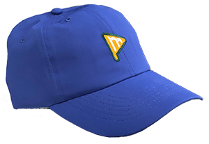 Momentum hat with logo